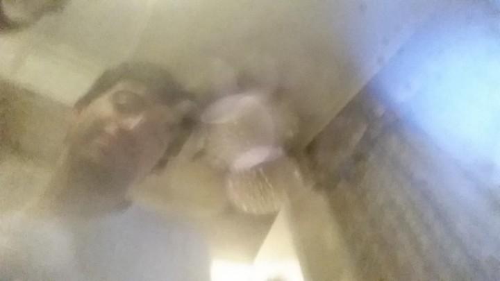 S5-water-damage-selfies