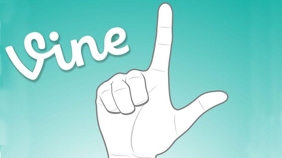 vinee_1