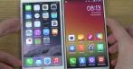 Xiaomi Apple