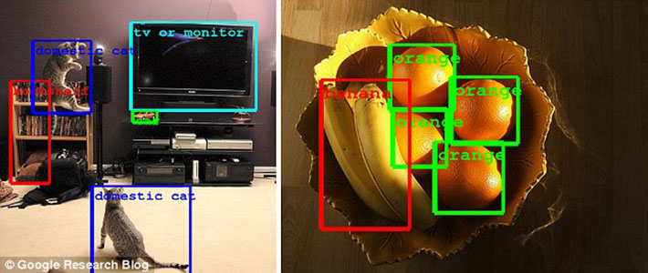 google detection objet