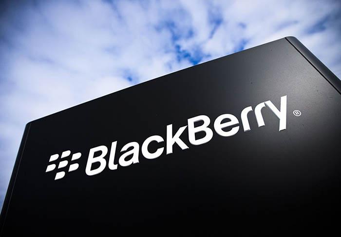blackberry comparaison