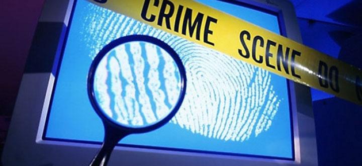 cyber crime europol