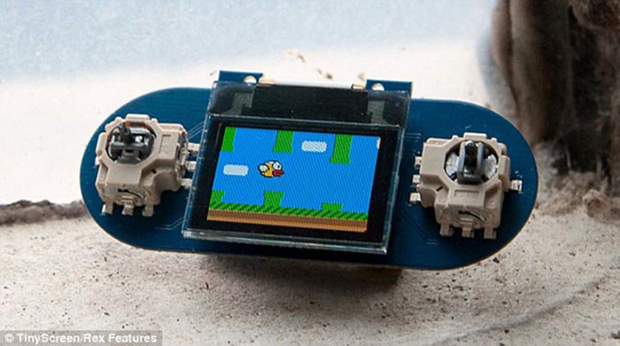 tiny circuits mini console