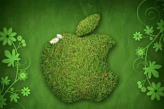impact environnemental d'internet