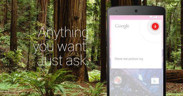 ok google hors ligne