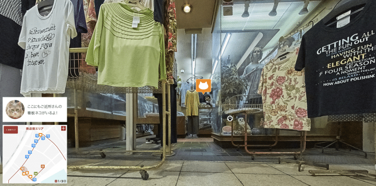 Cat Street View 2