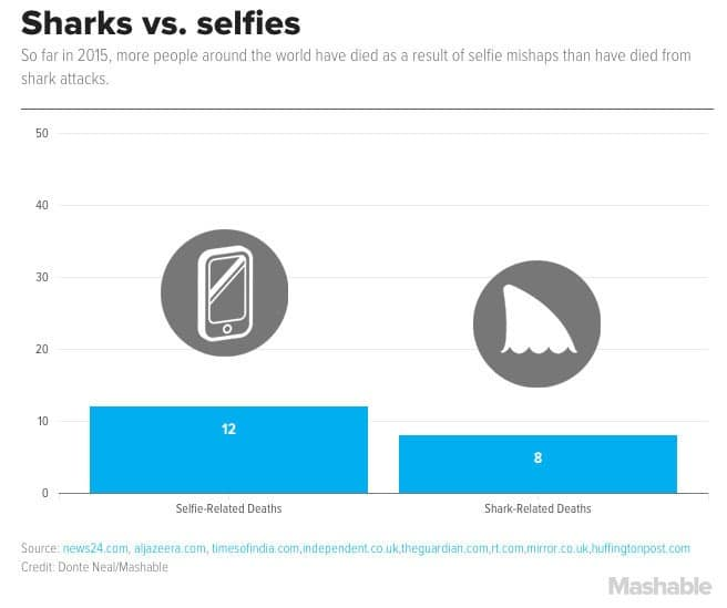 selfies requins