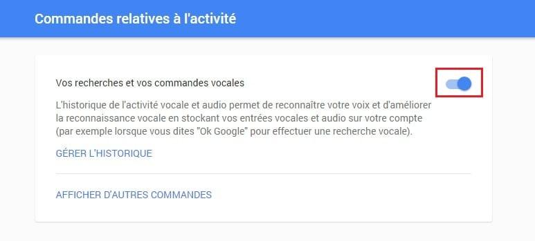 Google activité vocale