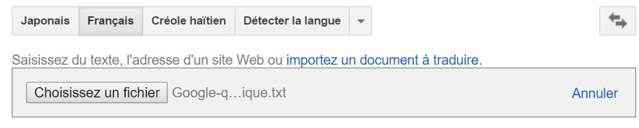Google Translate document