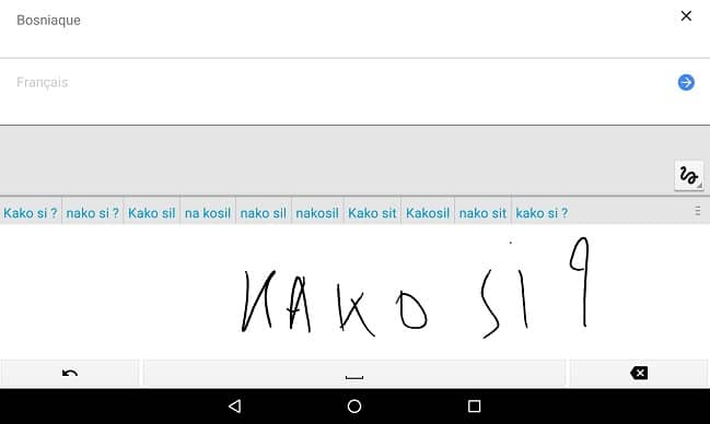 Google Translate main levee