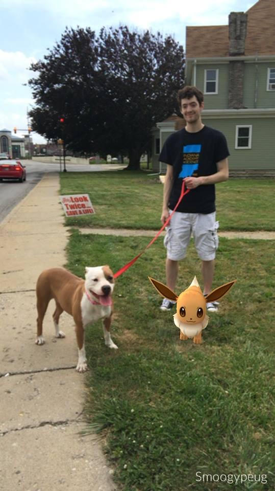 pokemon-go-refuge-chien