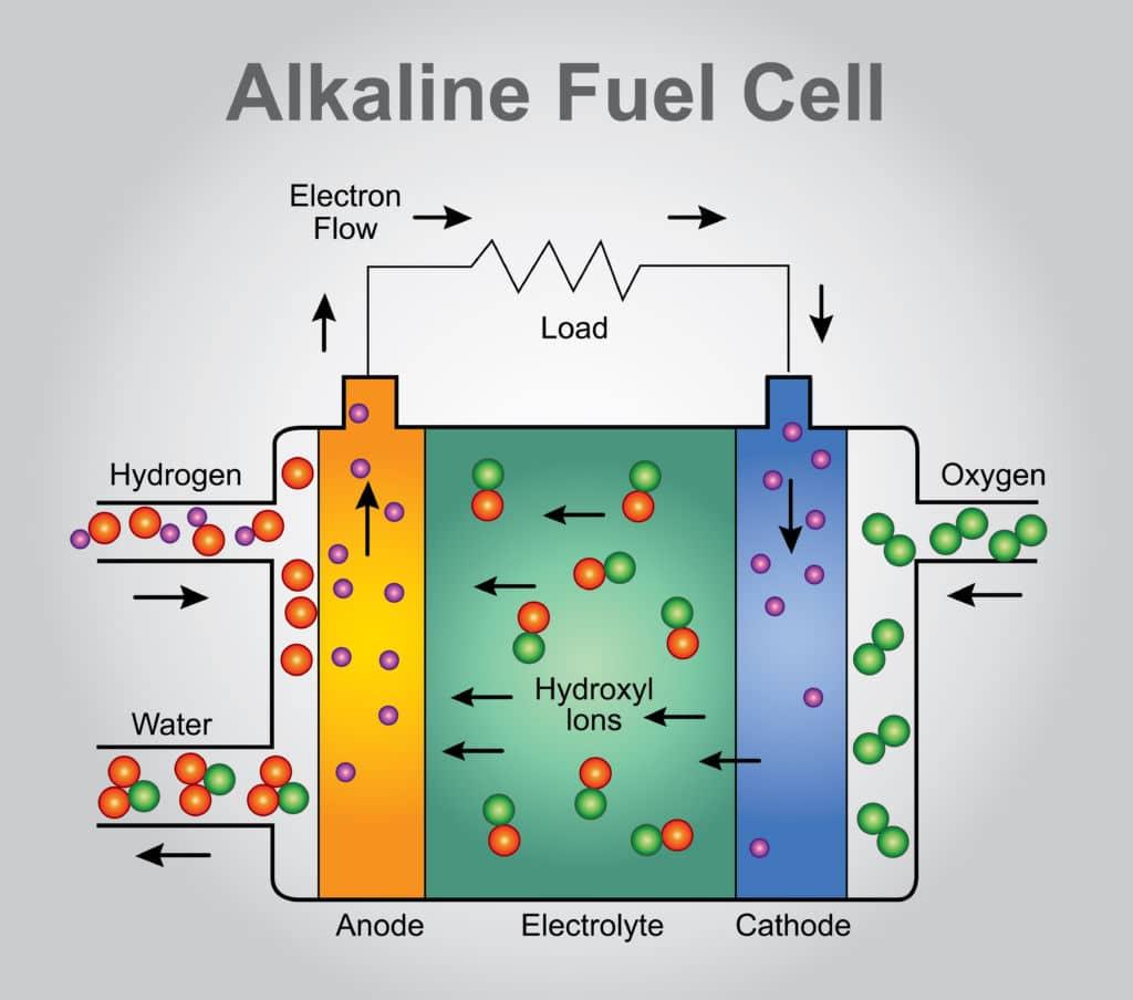 batterie algue smartphone