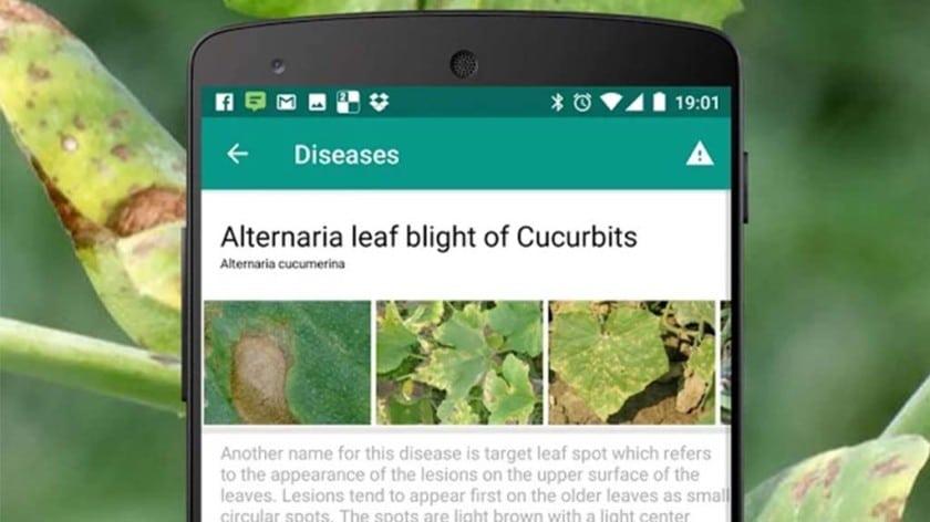 agrobase jardinage android