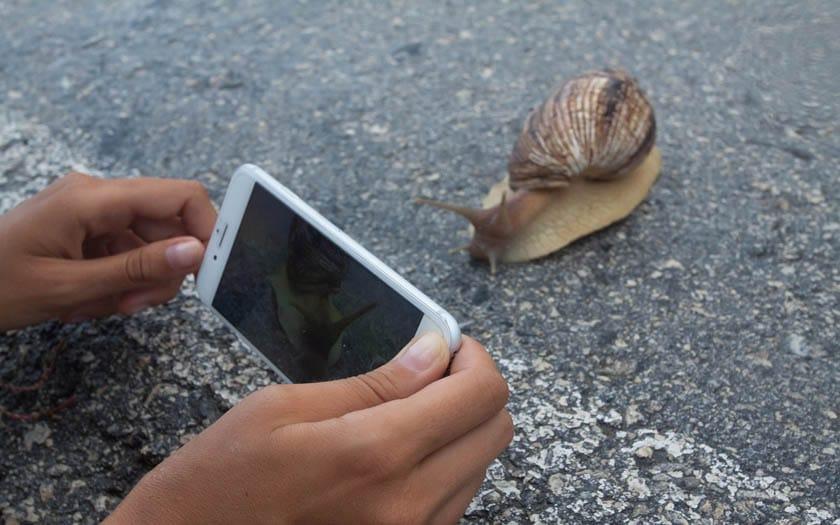 smartphone lent