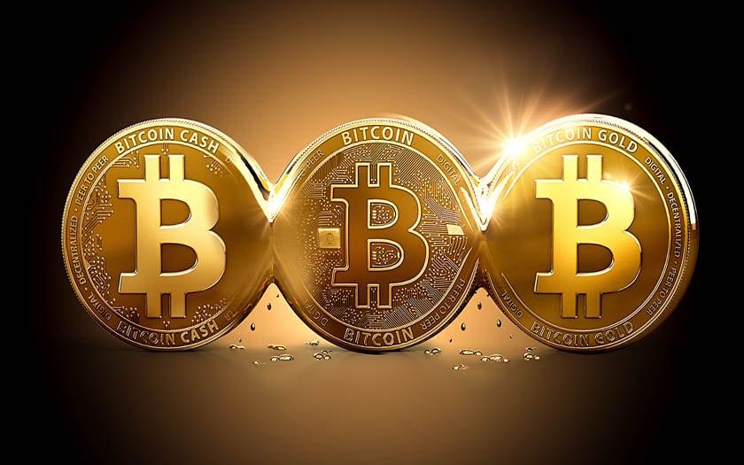 Bitcoin : les investisseurs « doivent se préparer à perdre tout leur argent »