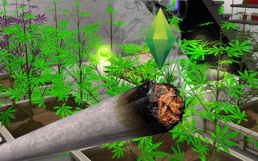 sims 4 drugs