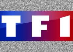 tf1 freebox