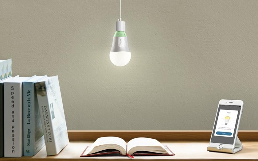 LED TP LINK