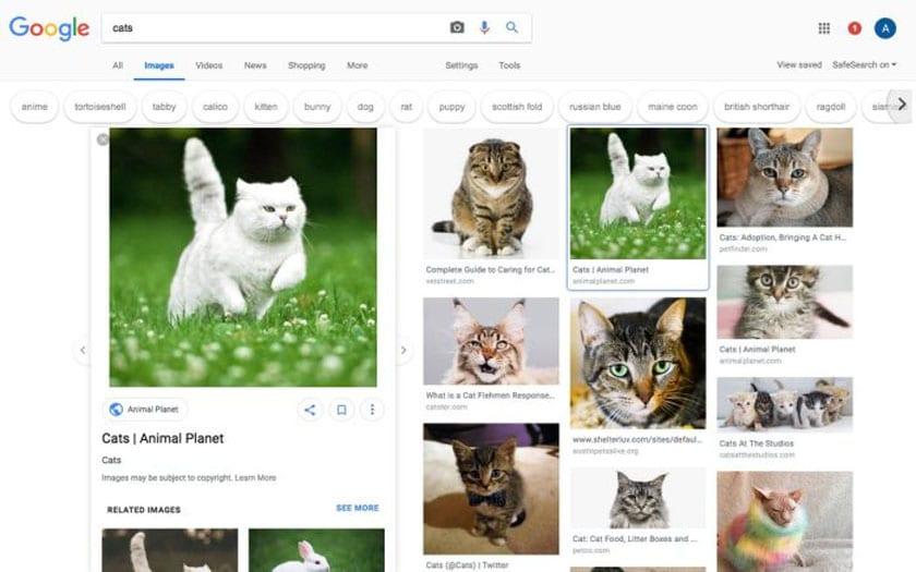 google images design