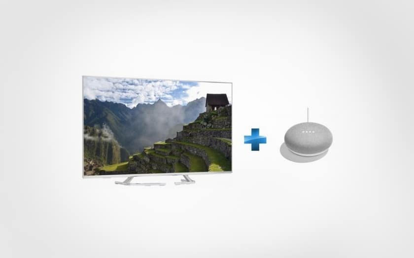 TX50EX700E + Enceinte intelligente Google Home mini