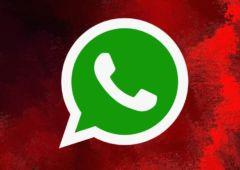 whatsapp telecharger apk