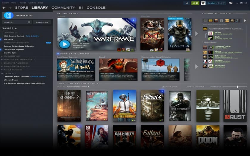 steam bibliotheque