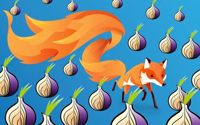 le renard de firefox et les unions du logo Tor
