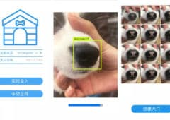 reconnaissance faciale chien 2