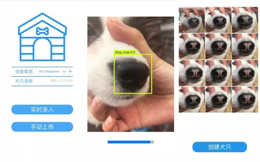 Reconnaissance Faciale chiens