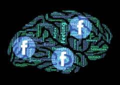 facebook cerveau