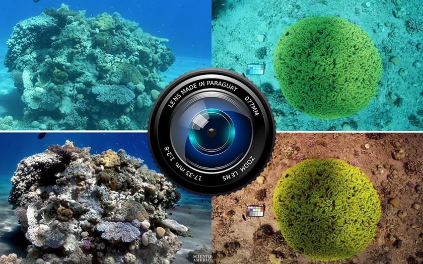 photos océan avant après et lentille photo