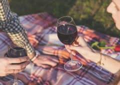 alexa vin