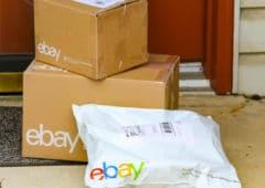 ebay-colis-harcèlement-porc-cafards