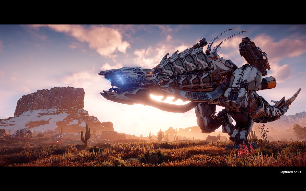 horizon zero dawn pc date