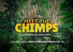disney plus weekend chimpanzes