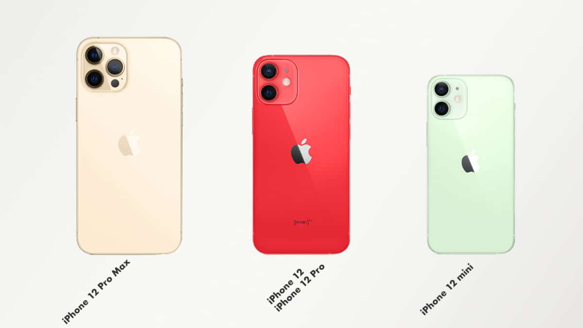 iPhone 12 tailles