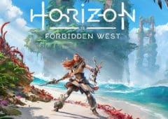 horizon forbidden west sortie