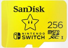 carte SanDisk 256 Go pour Nintendo Switch