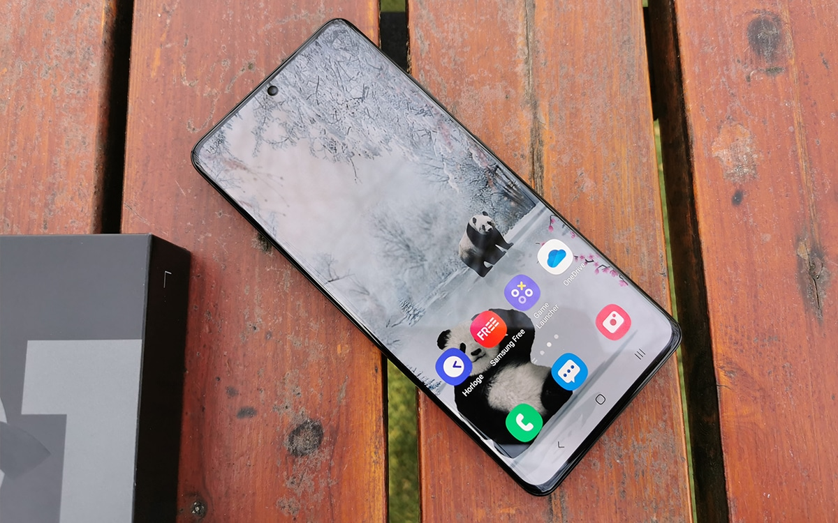 Samsung Galaxy S21 Ultra et sa boite