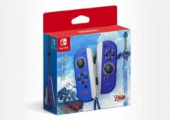 joy con zelda skyward sword