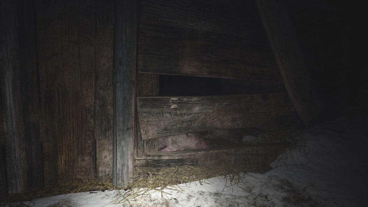 resident evil village test