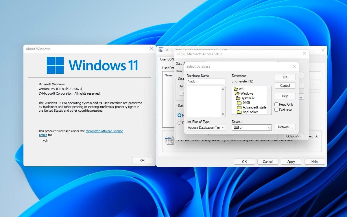 Windows 11 Windows 3.1
