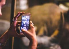 citizen application iphone accident crime delit