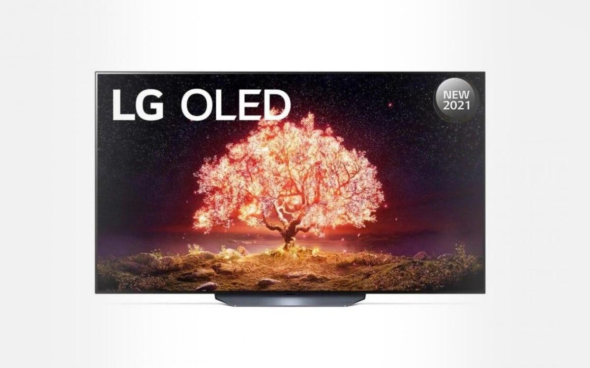 TV LG OLED 65 164 cm LED65B13 2021