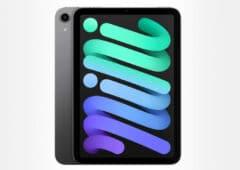 apple ipad mini 2021 8 3 wifi 64 go gris si