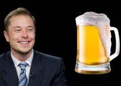tesla elon bière